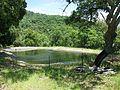 Bassin des Maisons Forestières des Caunes 83 Bormes V-2008.jpg