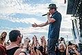 Beatsteaks Lollapalooza 2015-13.jpg