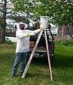 Beekeeper at Swarm.jpg