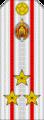 Belarus MIA—04 Colonel rank insignia (White).png