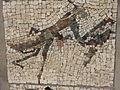 Belgrade zoo mosaic0030.JPG