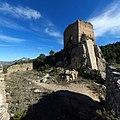 Benifallim 15 - Torre del Castillo.jpg