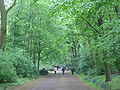 Berlijn tiergarten park.jpg