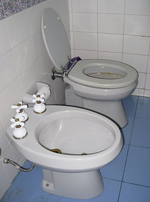 Bidet - A 20th century bidet (foreground)