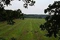 Bird's Eye View of Shabbington Wood - geograph.org.uk - 259871.jpg