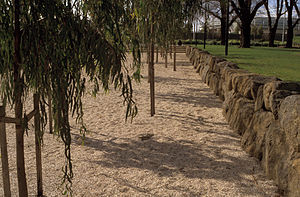 Birrarung Marr, Melbourne - The shell-grit surface in the south channel, near Speakers Corner