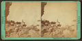 Black Rock in the Great Salt Lake, by Savage, C. R. (Charles Roscoe), 1832-1909.png