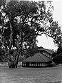 Boat House on River Torrens(GN09015).jpg