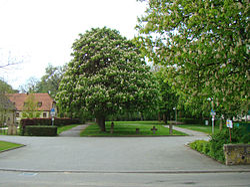 Schlosspark von Bonfeld