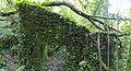 Bosque - Bertamirans - Rio Sar - 020.jpg