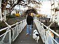 Brücke - Gewerbekanal - panoramio.jpg