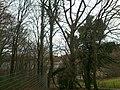 Brabandstaller Weg Ennepetal, 25.12.13 - panoramio (1).jpg