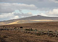 Brat Tor and Great Links Tor.jpg
