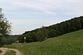 Breitenfurt - Naturschutzgebiet 59 - Dorotheerwald.jpg