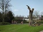 File:Brenchley Gardens 0116.JPG