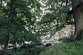 Bridge through the trees - geograph.org.uk - 928490.jpg