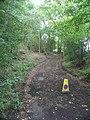 Bridlepath 1420-1 towards Pear Tree Farm - geograph.org.uk - 240187.jpg