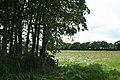 Broadwoodwidger, near Drownsmill - geograph.org.uk - 448066.jpg