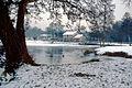 Brocas sous la neige 27.jpg