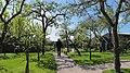 Broek op Langedijk, Netherlands - panoramio (1).jpg