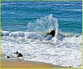 Broken Wave, Big Sur, Chris (2) (13387801853).jpg