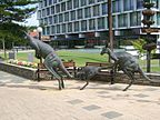 Perth - Panorama - Australia Zachodnia