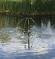 Brunnen 2 Deroystr6 München.jpg