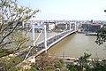 Budapest Elisabeth bridge 2.jpg