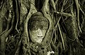 Buddha. Ayuthaya, Thailand (6944357277).jpg