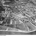 Bundesarchiv Bild 195-0100, Rheinbefliegung, Oestrich-Winkel.jpg