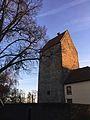 Burg Wittlage.jpg
