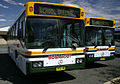 Busabout 3954 MO & 3953 MO - PMC bodied Mercedes-Benz O405 (Ex Moorabbin Transit).jpg