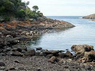 Bass Point Reserve