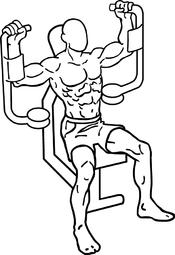 banc de musculation pectoraux
