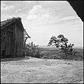 CH-NB - Belgisch-Kongo, bei Thysville (Mbanza Ngungu)- Landschaft - Annemarie Schwarzenbach - SLA-Schwarzenbach-A-5-26-055.jpg