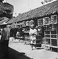 COLLECTIE TROPENMUSEUM Vogeltjesmarkt (pasar) in Solo Surakarta Java TMnr 10002435.jpg