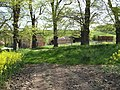 Cadeby farm through the trees - geograph.org.uk - 419503.jpg