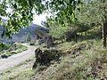 Calzada de Vergara 2017 Wiki takesLa Manchuela 12.jpg