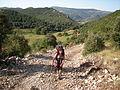 Camino del Norte (4165935831).jpg