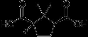 Camphoric acid - Image: Camphoric acid