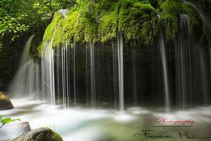 """Casaletto Spartano - Capelli di Venere (""""Venus' hair"""") waterfall"""