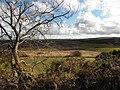 Cark Townland - geograph.org.uk - 1771395.jpg