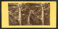 Cascade in Crawford Ravine. No. 2, from Robert N. Dennis collection of stereoscopic views.png