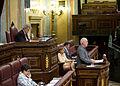 Cayo Lara interviene en el Pleno del Congreso (7).jpg