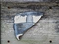 Cedar Key Art on the Street - Flickr - Andrea Westmoreland.jpg