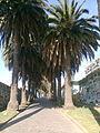 Cementerio Tres, Playa Ancha, Valparaíso. 26.jpg