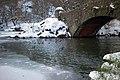 Central Park (New York) 12 Winter ducks.jpg