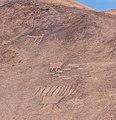 Cerros Pintados, Pampa del Tamarugal, Chile, 2016-02-11, DD 99.jpg