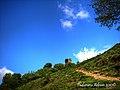 Cetatea soimos... - panoramio (1).jpg