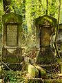 Chenstochov ------- Jewish Cemetery of Czestochowa ------- 152.JPG